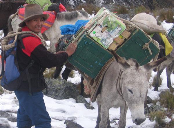 Victor-cordillera-blanca-donkey-driver