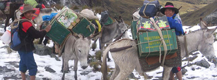 alpamayo-trek-doneky-drivers