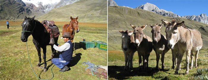 peru-trek-responsible-tourism