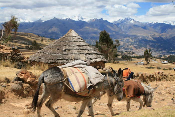 huaraz-Cordillera-Negra-day-hike