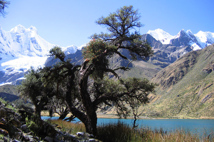 huayhuash-trek-12-days