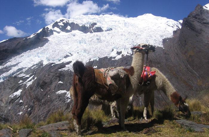 peru-Alpamayo-Trek-13-Days